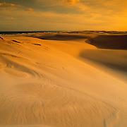 Stockton Sand Dunes, near Newcastle NSW Australia