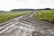 Unsurfaced track road chalk upland landscape Figheldean Down, Salisbury Plain, Wiltshire, England, UK