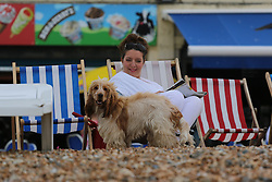 © Licensed to London News Pictures. 14/06/2014. Brighton, UK. A woman and her dog on Brighton beach. Cloudy and the occasional shower hasn't stopped people from visiting Brighton and spending the day at the beach. Photo credit : Hugo Michiels/LNP