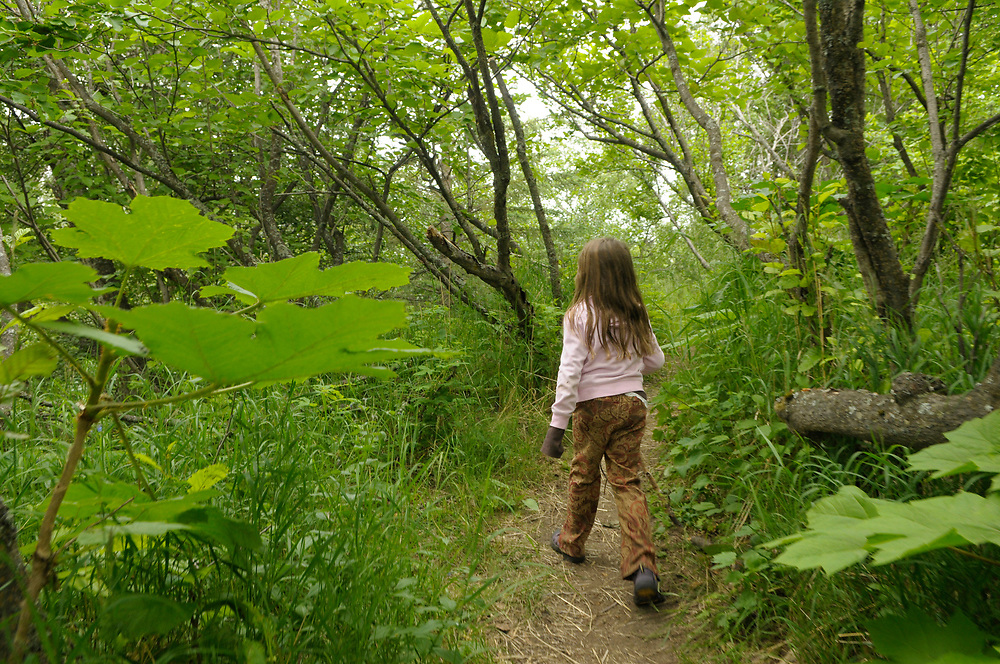 Anchorage, Alaska. Trail over the coast at Kinkaid Park in South Anchorage. Kincaid Park is home to the city's largest moose population, but bipeds also enjoy the beauty of this former glacial area. with more than 1,400 acres. Whitaker Aikins family and Mack Family.