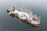 https://Duncan.co/snow-covered-island-with-dead-trees