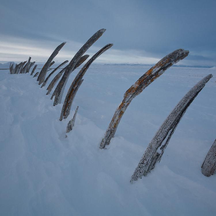 Whale bone cemetary, Point Hope, Alaska
