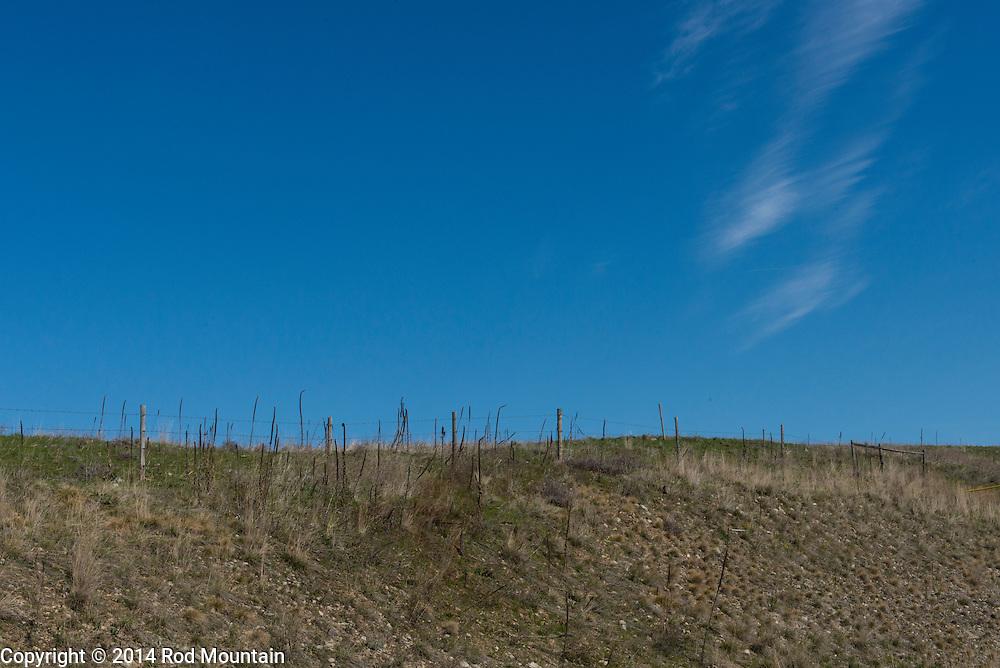 Okanagan hillside fenced off for cattle grazing.