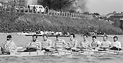 Chiswick. London.<br /> Eights starting from Mortlake<br /> Stains BC<br /> 1987 Head of the River Race over the reversed Championship Course Mortlake to Putney on the River Thames. Saturday 28.03.1987. <br /> <br /> [Mandatory Credit: Peter SPURRIER;Intersport images] 1987 Head of the River Race, London. UK