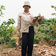 Portrait of a woman holding scrap metal in Dai Bai, a village specialising in copper casting and aluminium hammering, Bac Ninh province, Vietnam. The traditional activity for the village is casting objects such as gongs from copper although everyday objects such as kettles and bowls from aluminium are also made there.