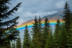 United States, Washington, Crystal Mountain, rainbow in valley throug trees