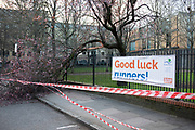 Fallen tree cordoned off by tape following storms on the route of a half marathon fun run in Wapping, London, United Kingdom.