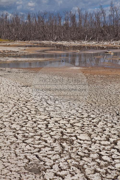 Dry salt flats at Cabo Rojo wildlife preserve Puerto Rico