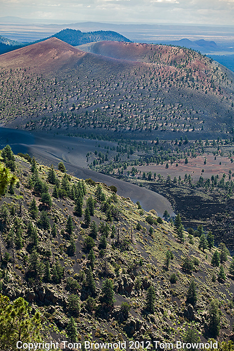 Top of the O'leary trail one has a view of Sunset Crater National Monument to the South and it's Bonito Lava field.
