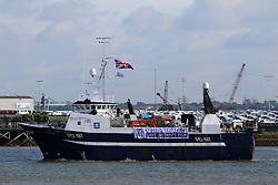 © Licensed to London News Pictures. 15/06/2016. Fishing for Leave flotilla campaigning to leave the EU in the forthcoming referendum has made its way up the Thames. The flotilla of trawlers and fishing boats are seen here passing Gravesend and Greenhithe in Kent. UKIP Leader Nigel Farage is travelling up the river with the flotilla. Credit : Rob Powell/LNP