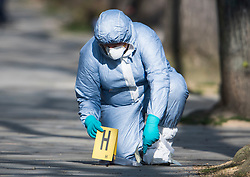 © Licensed to London News Pictures. 13/04/2019. London, UK. Police forensics examine a bullet on the floor at the scene in Holland Park after shots were fired near the Ukrainian embassy. Photo credit: Ben Cawthra/LNP