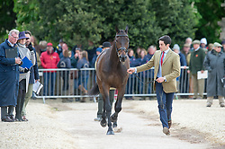 Way Ben, (GBR), Galley Light<br /> First Horse Inspection - Mitsubishi Motors Badminton Horse Trials <br /> Badminton 2015