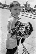 Young boy with chicken. inside the Palestinian Refugee Camps of Sabra and Shatila, Beirut, Lebanon 1998.