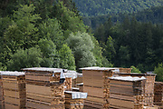 Freshly-sawed planks piled up in a timber yard near a pine forest in rural Slovenia, on 18th June 2018, in Bled, Slovenia.