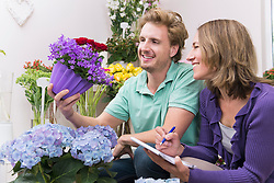 Colleagues checking flowers in shop, smiling