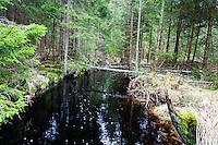 Sweden, Hunneberg table mountain. Black river.