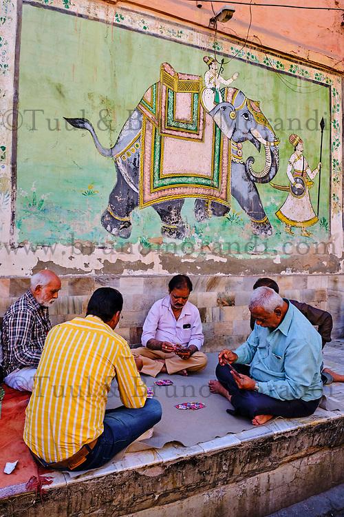 Inde, Rajasthan, Jodhpur la ville bleue, joueur de carte // India, Rajasthan, Jodhpur, the blue city, card player