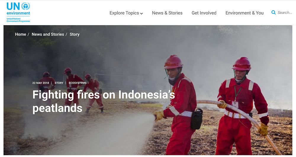 https://www.unenvironment.org/news-and-stories/story/fighting-fires-indonesias-peatlands