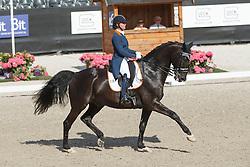 Heijkoop Danielle, (NED), Siro NOP<br /> Kingsley Donadeo Grand Prix<br /> Dutch Championship Dressage - Ermelo 2015<br /> © Hippo Foto - Dirk Caremans<br /> 17/07/15