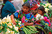 GUATEMALA, HIGHLANDS, MARKETS Chichicastenango; Sunday market day; Maya Indian women selling flowers on the steps of Santo Tomas church