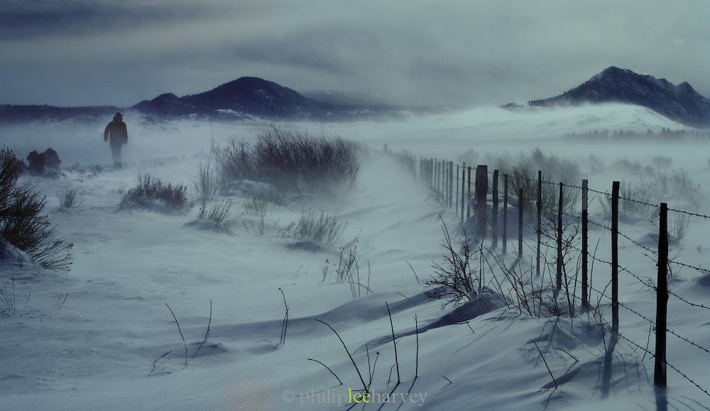 Landscape of Mono Lake, Mono County, California, USA