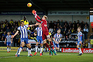 Wigan goalkeeper Jakob Haugaard (28) during the EFL Sky Bet Championship match between Burton Albion and Wigan Athletic at the Pirelli Stadium, Burton upon Trent, England on 14 January 2017. Photo by Richard Holmes.