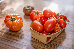 Close-up tomatoes in basket on table, Munich, Bavaria, Germany