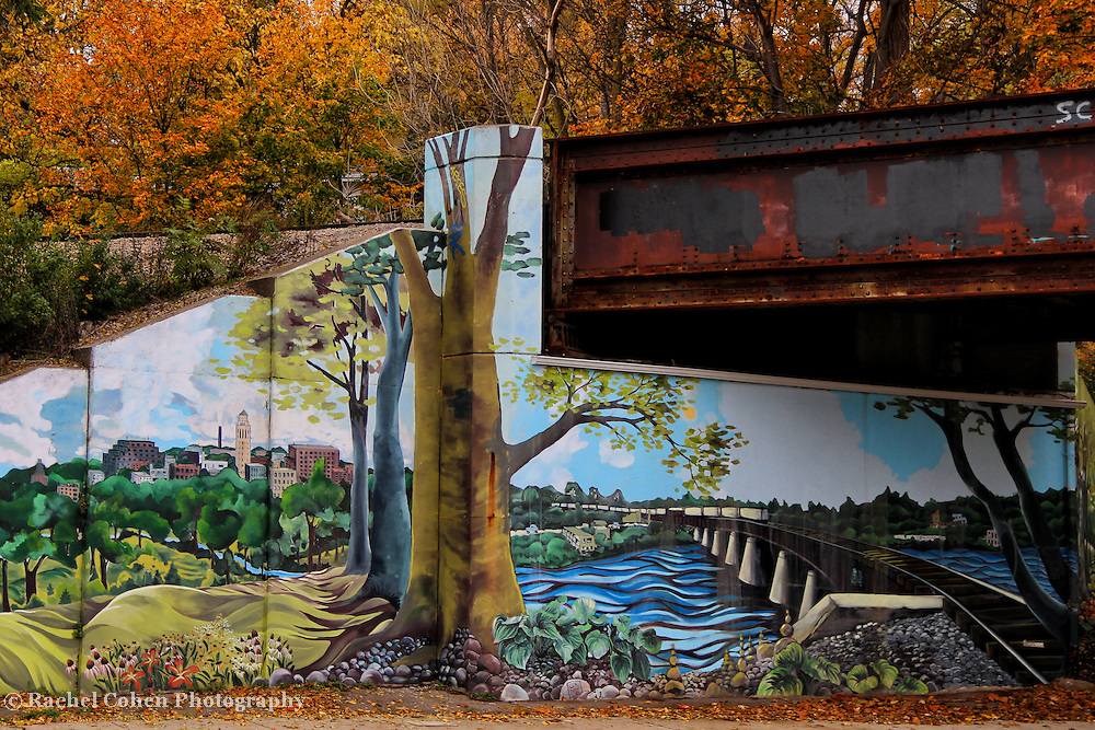 """""""Ann Arbor in Mural""""<br /> <br /> A beautiful mural of Ann Arbor under an old train bridge during autumn in Ann Arbor Michigan!!<br /> <br /> Architecture: Structures and buildings by Rachel Cohen"""