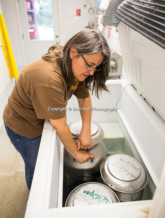 Tessa McCormick shows goat milk as it cools at the beginning of the cheese making process at White River Creamery on Friday, June 20, 2014 in Elkins, Ark.<br /> <br /> Photo by Beth Hall