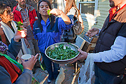 Making a salad from the collected greens and herbs. Foraging for wild edibles in Los Angeles neighborhood Echo Park. Nance Klehm leads her Urbanforage guided walk showing and educating attendees about various greens, herbs and other edibles readily found along streets, lots and front yards. Los Angeles, California, USA
