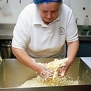 Cheesemaker, Kathy Biss adding salt to the Black Douglas and Caise Cruin curd at the West Highland Dairy in the village of Achmore by the Kyle of Lochalsh in the Scottish Highlands. Owned by Kathy and David Biss, the West Highland Dairy was established in 1987 and as well as managing their own small commercial dairy business, they have taught a great number of prospective cheesemakers during the last 20 years.