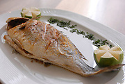 Grilled fish on a plate
