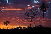 Aquidauana_MS, Brasil...Por-do-sol na fazenda Rio Negro no Pantanal...The sunset in the Rio Negro farm in Pantanal...Foto: JOAO MARCOS ROSA / NITRO