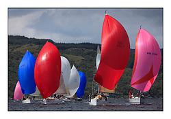 Brewin Dolphin Scottish Series 2011, Tarbert Loch Fyne - Yachting.Class 3 downwind including .IRL1141 ,Storm ,Pat Kelly ,Rush SC ,J109, GBR6969T, Grand Cru II, Grand Cru Syndicate, CCC, First 40.7, FRA37296, Salamander Team Sunbird, Chris Dodgshon, Fairlie YC  .