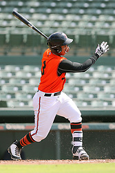 July 17, 2018 - Sarasota, FL, U.S. - Sarasota, FL - JUL 17: Davis Tavarez (3) of the Orioles at bat during the Gulf Coast League (GCL) game between the GCL Twins and the GCL Orioles on July 17, 2018, at Ed Smith Stadium in Sarasota, FL. (Photo by Cliff Welch/Icon Sportswire) (Credit Image: © Cliff Welch/Icon SMI via ZUMA Press)