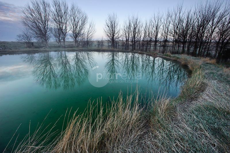 Charca con arboles reflejados. Paraje de Sugel. Almansa. Albacete ©Antonio Real Hurtado / PILAR REVILLA