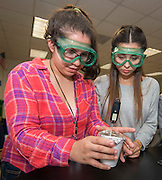 Lauren Hacker teaches chemistry at Westside High School, May 7, 2015.