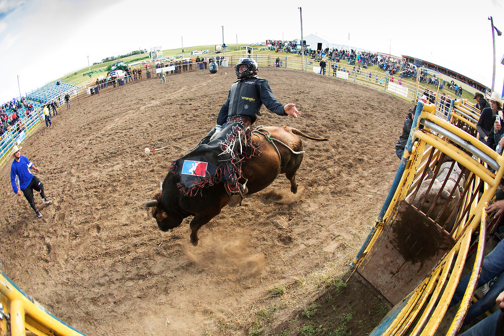during the AirdrieBull-A-Rama in Calgary, Alberta, Wednesday, June 28, 2017. Todd Korol/The Globe and Mail