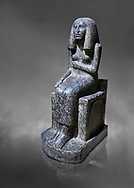 Ancient Egyptian statue of princess Redji, grandorite, Saqqara, Old Kingdom, 3rd Dynasty (2592-2543 BC). Egyptian Museum, Turin. grey background.<br /> <br /> The inscriptions at the base of the statue indicates that the statue is of the Kings Daughter named Redji. Never intended as a faithful depiction of the deceased , the statue was placed in the tomb to substitute for the deceased. The statue is in the typical rigid style of the old kingdom with a voluminous wig. .<br /> <br /> If you prefer to buy from our ALAMY PHOTO LIBRARY  Collection visit : https://www.alamy.com/portfolio/paul-williams-funkystock/ancient-egyptian-art-artefacts.html  . Type -   Turin   - into the LOWER SEARCH WITHIN GALLERY box. Refine search by adding background colour, subject etc<br /> <br /> Visit our ANCIENT WORLD PHOTO COLLECTIONS for more photos to download or buy as wall art prints https://funkystock.photoshelter.com/gallery-collection/Ancient-World-Art-Antiquities-Historic-Sites-Pictures-Images-of/C00006u26yqSkDOM