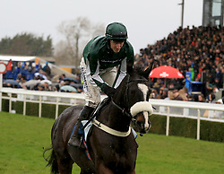 Prime Venture ridden by Adam Wedge during the Marstons 61 Deep Midlands Grand National race at Uttoxeter Racecourse.