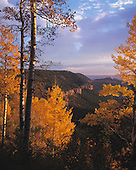 02377 East Rim Viewpoint Kaibab National Forest quaking aspen autumn fall Grand Canyon wilderness