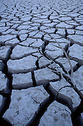 Cracked, dry riverbed, southern New Mexico
