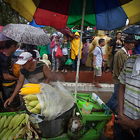 good business was done by street vendors of food and drink. Despite it raining all day, between six and seven million people turned out for a mass by Pope Francis in Rizal Park in Manila.