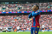 GOAL CELEBRATION - Crystal Palace's Jason Puncheon celebrates scoring the opening goal <br /> <br /> Photographer Craig Mercer/CameraSport<br /> <br /> Football - The Emirates FA Cup Final - Crystal Palace Manchester United - Saturday 21st May 2016 - Wembley - London<br /> <br /> © CameraSport - 43 Linden Ave. Countesthorpe. Leicester. England. LE8 5PG - Tel: +44 (0) 116 277 4147 - admin@camerasport.com - www.camerasport.com