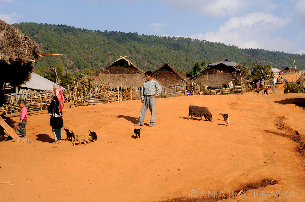 Burma/Myanmar, Golden Triangle. Life in the typical Akha village.