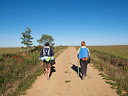 The long dusty track continues through the Meseta dry lands of Northern Spain. The high flat plateau is crossed by pilgrims on their way to Santiago de Compostela and takes many days to cross.