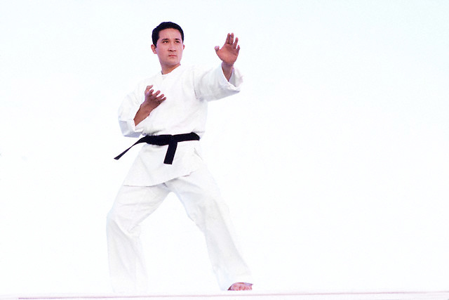 Martial artist --- Image by © Jim Cummins/CORBIS