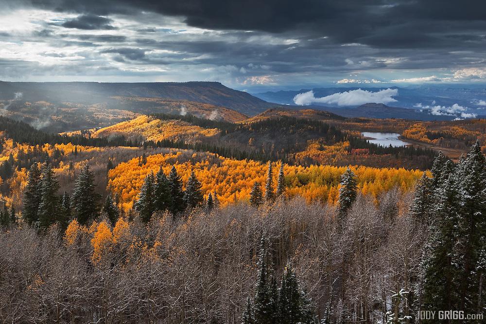 Grand Mesa - Colorado Fall Colors