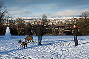 A man and woman walk their dogs in the snow, Queens Park, Glasgow.  The park is known for its view across the south side of Glasgow, with a snow covered Campsie Fells in the background.
