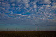 Early morning at the wind turbines generating electrical power at Horse Hollow Wind Farm, Nolan county, Texas the world's largest wind power project.